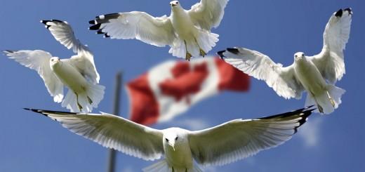 Kanada Work and Travel